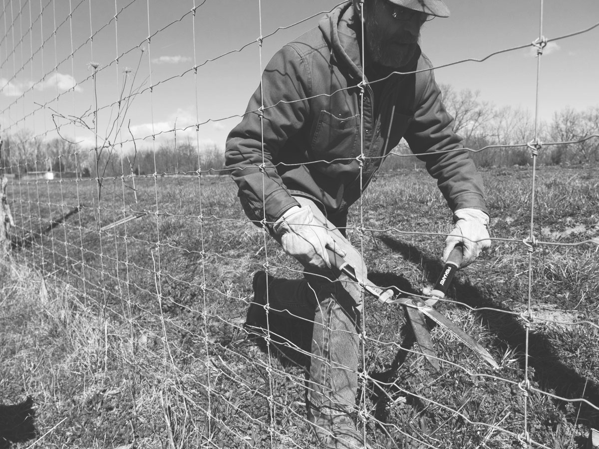 Farmer clearing fenceline